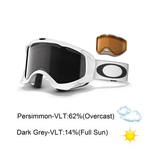 Oakley Twisted With Extra Lens Goggles 2014